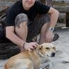 Tierschutz mit Perspektive vor Ort – Landauer Unternehmen unterstützt Förderverein Arche Noah Kreta e.V.