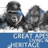 """Große Menschenaffen sollen von UNESCO als """"Lebendiges Welterbe"""" anerkannt werden"""