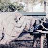 Köln/Obdachlosigkeit: Freier Wähler will genaue Zahlen und fordert Ehrlichkeit.