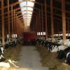 Nachhaltigkeit auf Milcherzeugerebene  weiter Thema des Jahres!