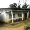 Kamerun: GKS renoviert und möbliert Schulruine