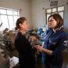 900 Familien erhalten im Irak ein neues Zuhause / Samaritan–s Purse fördert Wiederaufbau (FOTO)
