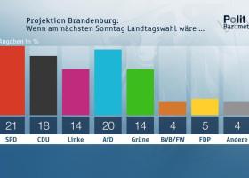 ZDF-Politbarometer Extra Brandenburg und Sachsen August 2019 / Kopf-an-Kopf-Rennen von SPD und AfD in Brandenburg/CDU klar vor AfD in Sachsen (FOTO)