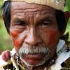 Brasilien: Shell verzichtet auf umstrittenes Biotreibstoff-Projekt auf indigenem Land