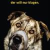 Verbandsklagerecht im Tierschutz – jetzt