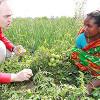 NETZ: 125 000 Menschen in Bangladesch besiegen den Hunger